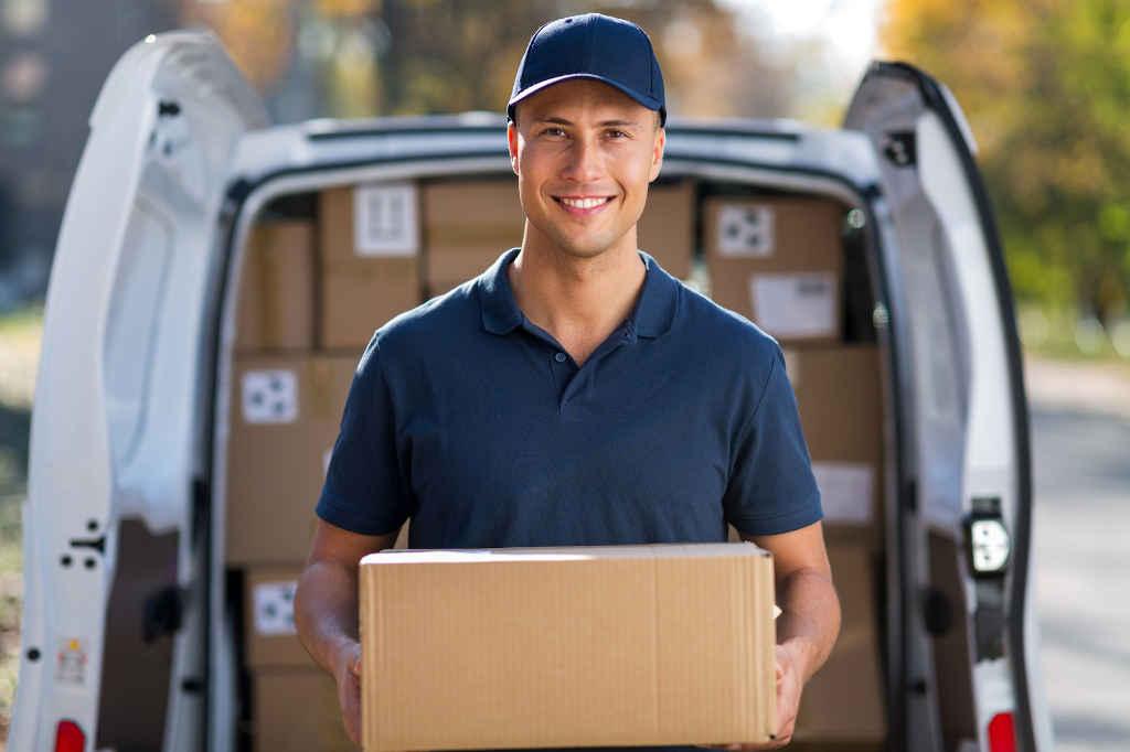 delivery zemove consegna a domicilio
